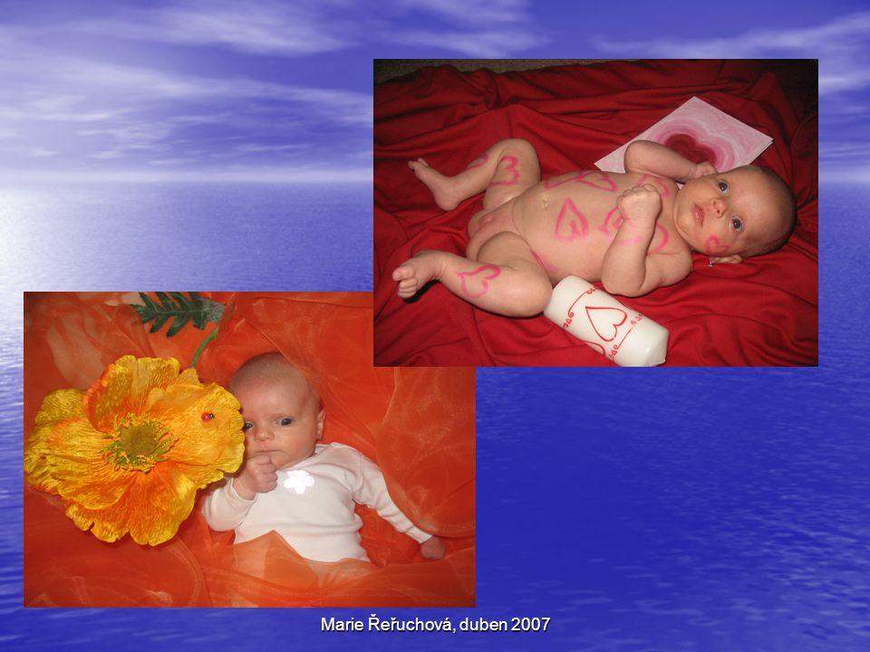 Marie Řeřuchová, duben 2007 Děkuji vám za pozornost a přeji pěkný den!!!