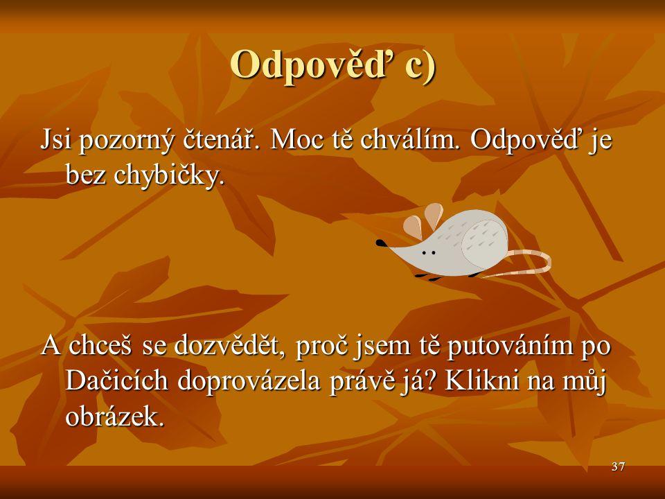 38 Myší díra Blízko náměstí je podchod, kterém Blízko náměstí je podchod, kterém místní občané říkají Myší díra.