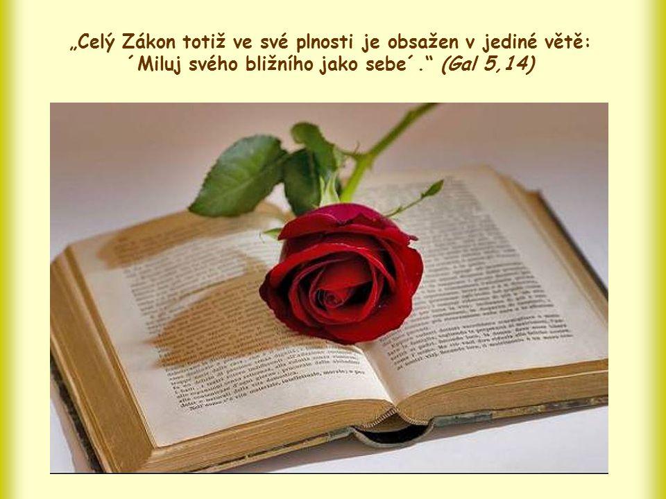 """Proto Pavel píše, že žijeme-li lásku k bližnímu, nejen zachováváme zákon, ale zachováváme ho v jeho """"plnosti ."""