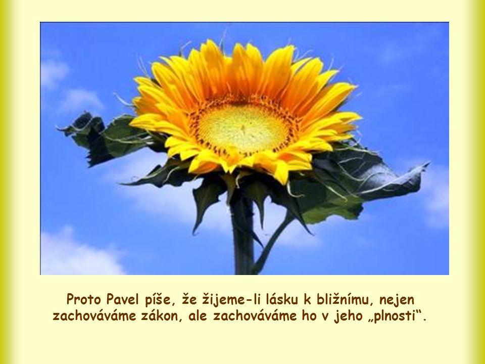 Ten, kdo miluje, se však nejen vyhýbá zlu; ten, kdo miluje, se otevírá druhým, chce dobro, koná dobro, dává se.