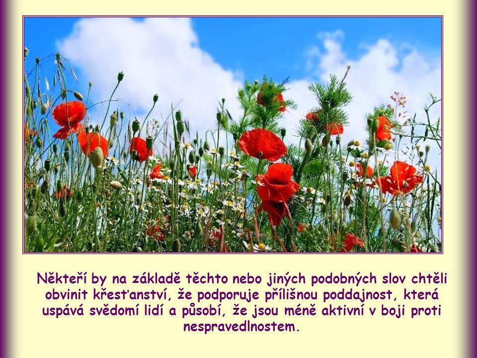 """""""Když děláte dobře, a přesto musíte trpět, je to milé Bohu. (1 Petr 2,20)"""