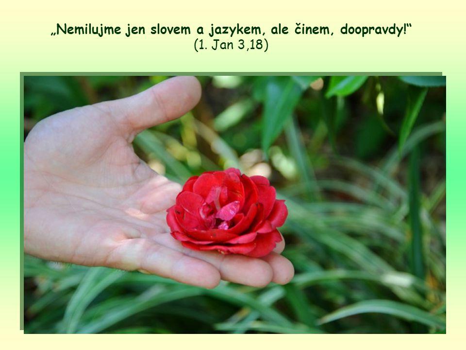 Jejich víra tak byla prázdná a neplodná, protože Ježíšovu díluchyběl neodmyslitelný přínos, který on žádá od každého z nás.