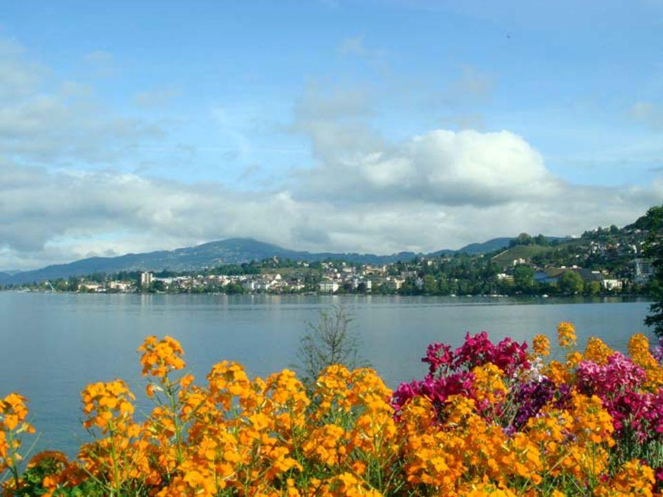 Je to jedno z nejkrásnějších měst Švýcarska. Je obklopeno lesy, horami a jezery.