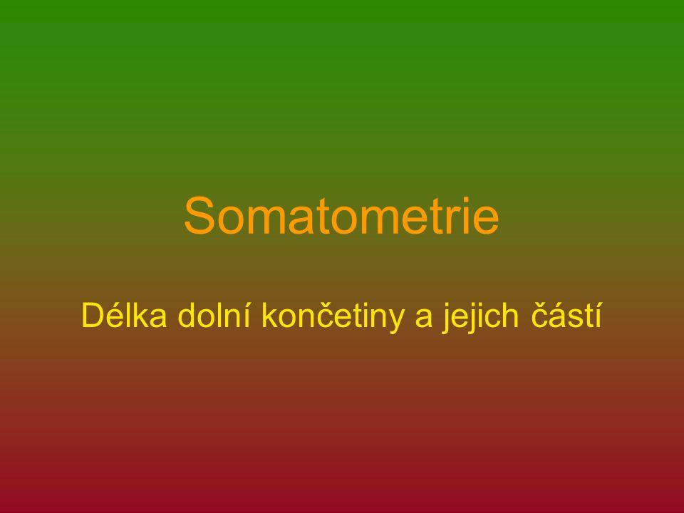 Somatometrie Délka dolní končetiny a jejich částí