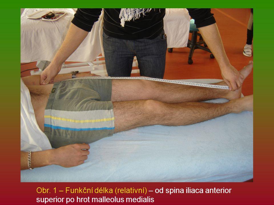 Obr. 1 – Funkční délka (relativní) – od spina iliaca anterior superior po hrot malleolus medialis