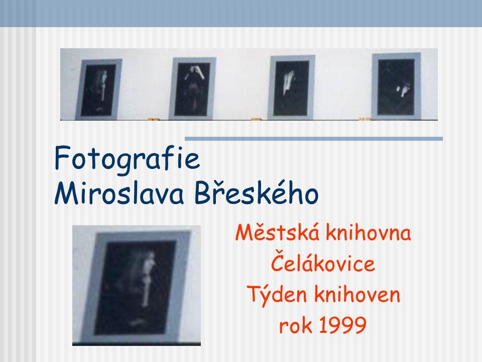 Čestné uznání: Iveta Pastyříková Aneta Kianková Jan Drnek Petr Henyš 1998