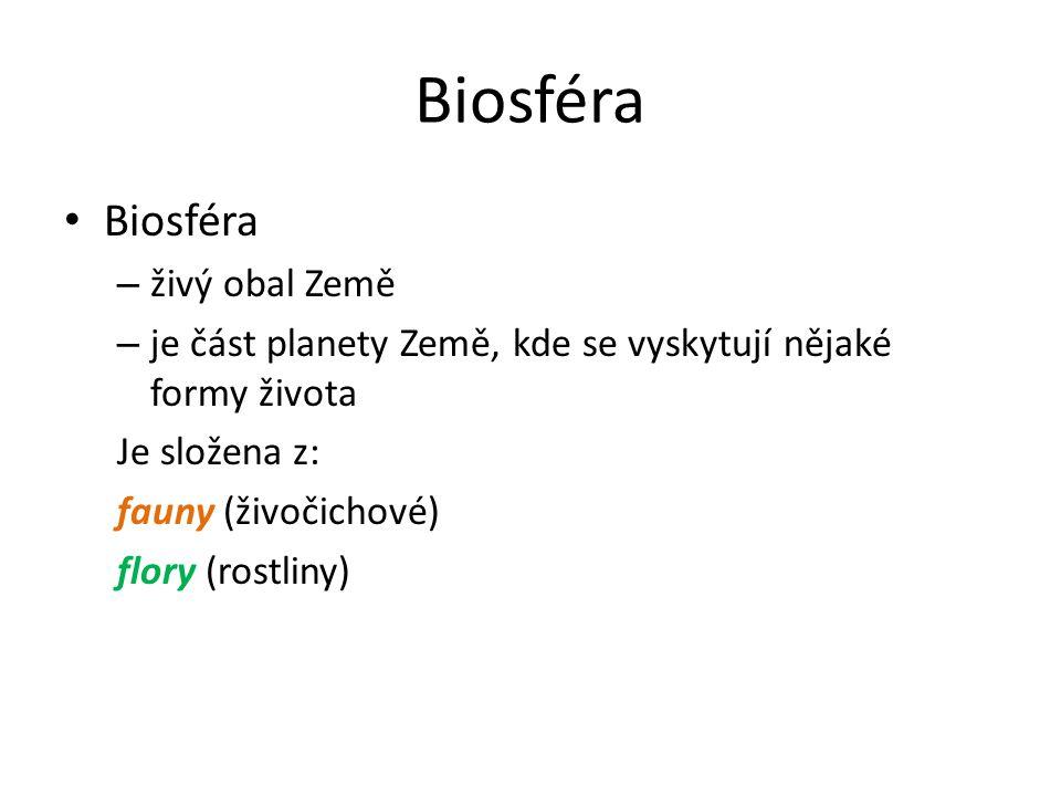 Biosféra V biosféře převažují autotrofní (obzvláště fotosyntetické) organismy nad živočichy a ostatními heterotrofními organismy.