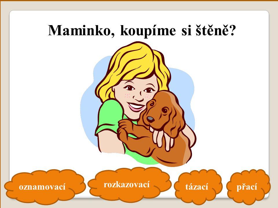 oznamovací rozkazovací tázacípřací Maminko, koupíme si štěně