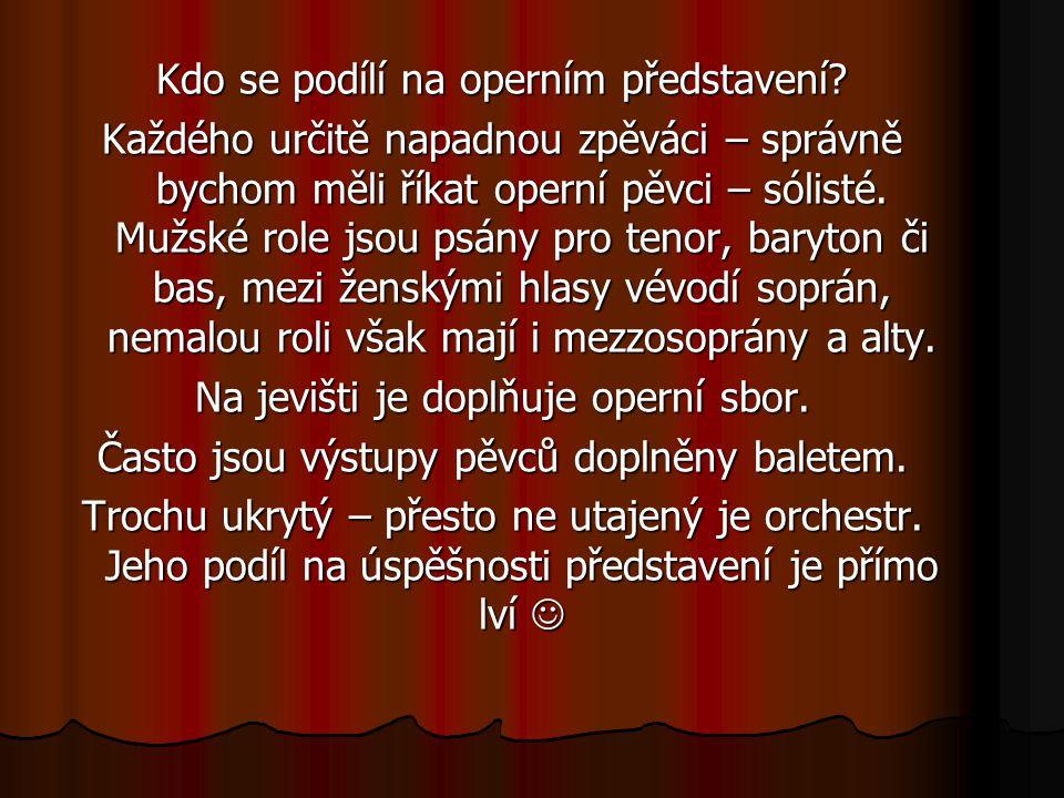 Kdo se podílí na operním představení? Každého určitě napadnou zpěváci – správně bychom měli říkat operní pěvci – sólisté. Mužské role jsou psány pro t