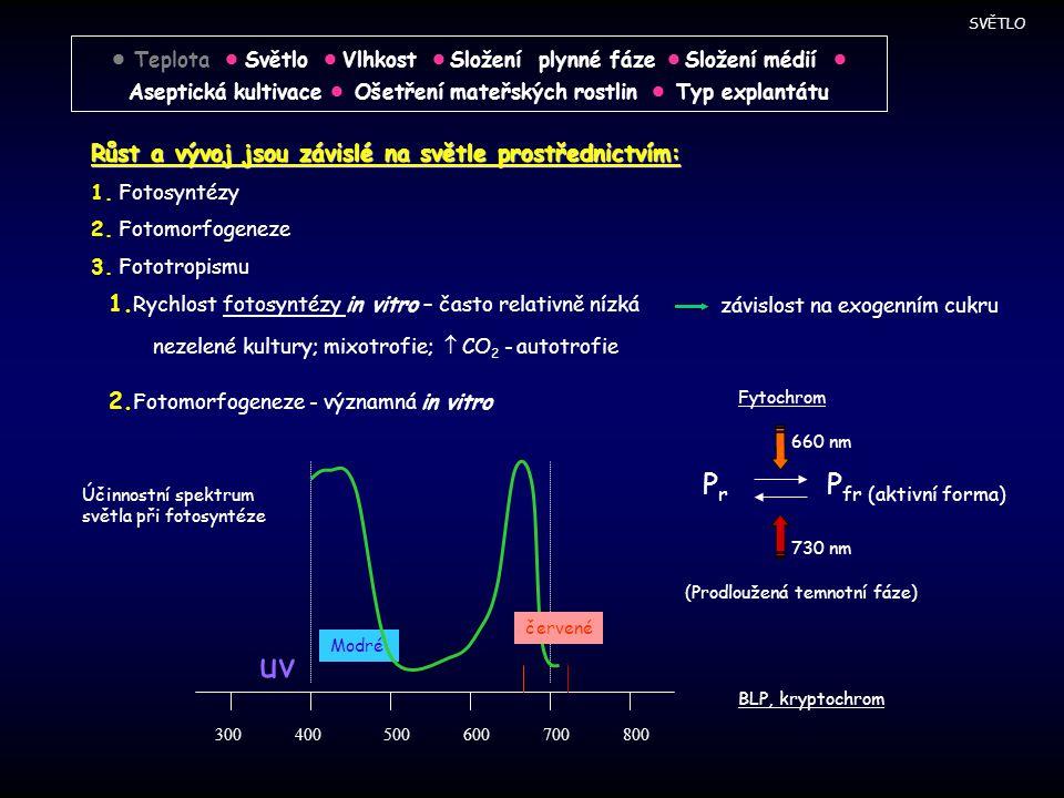 Růst a vývoj jsou závislé na světle prostřednictvím: 1. Fotosyntézy 2. Fotomorfogeneze 3. Fototropismu 1. Rychlost fotosyntézy in vitro – často relati