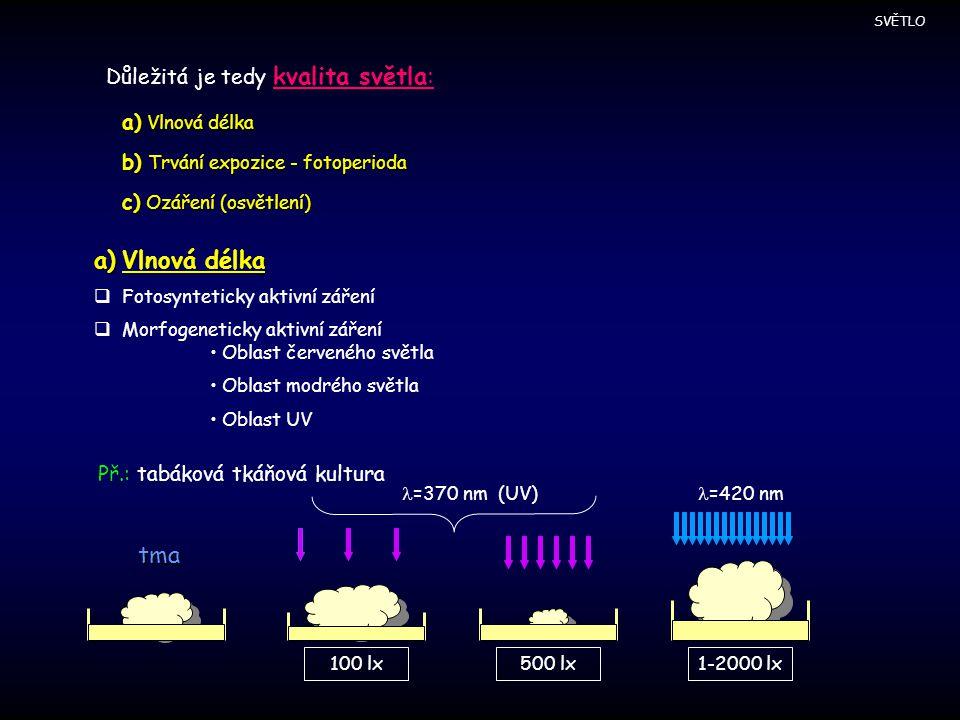 Důležitá je tedy kvalita světla: a) Vlnová délka b) Trvání expozice - fotoperioda c) Ozáření (osvětlení) a)Vlnová délka  Fotosynteticky aktivní zářen