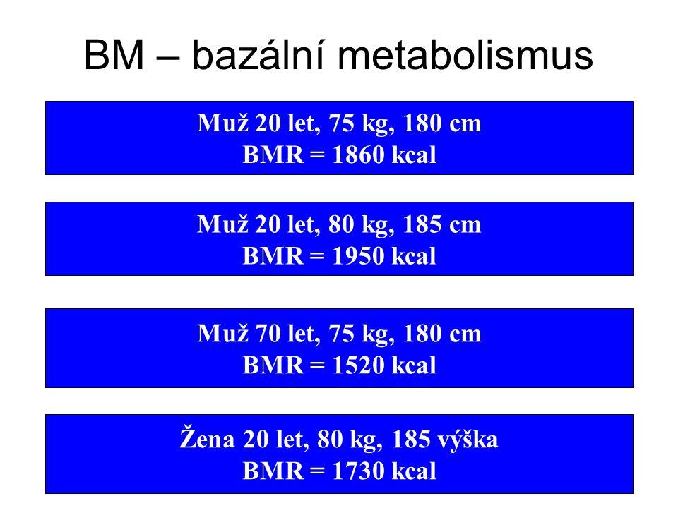 BM – bazální metabolismus – energetický výdej k zachování životně důležitých funkcí (v lehu v klidu, 12 hod bez jídla a 24 hod bez zátěže) – rozhodují
