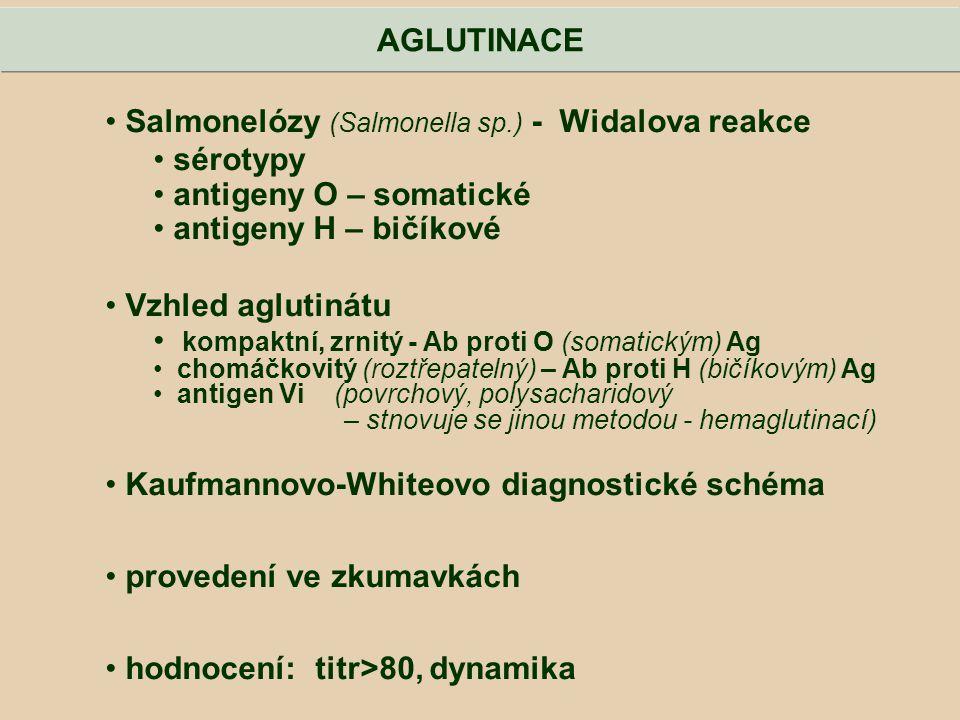 Salmonelózy (Salmonella sp.) - Widalova reakce sérotypy antigeny O – somatické antigeny H – bičíkové Vzhled aglutinátu kompaktní, zrnitý - Ab proti O
