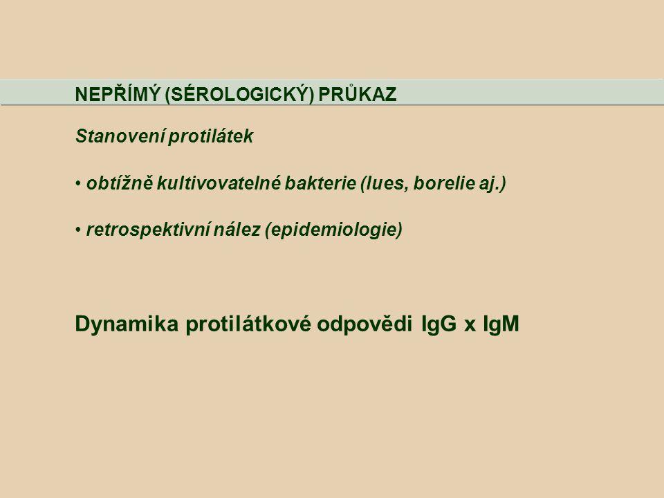 NEPŘÍMÝ (SÉROLOGICKÝ) PRŮKAZ Stanovení protilátek obtížně kultivovatelné bakterie (lues, borelie aj.) retrospektivní nález (epidemiologie) Dynamika pr