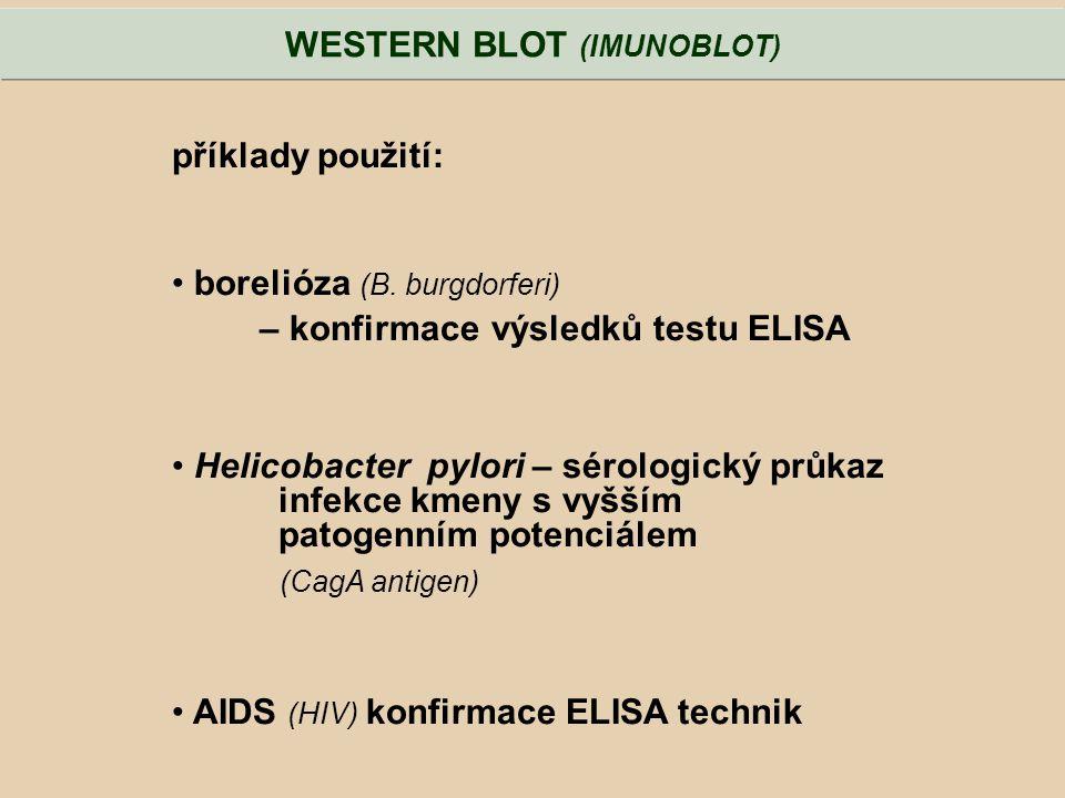 příklady použití: borelióza (B. burgdorferi) – konfirmace výsledků testu ELISA Helicobacter pylori – sérologický průkaz infekce kmeny s vyšším patogen