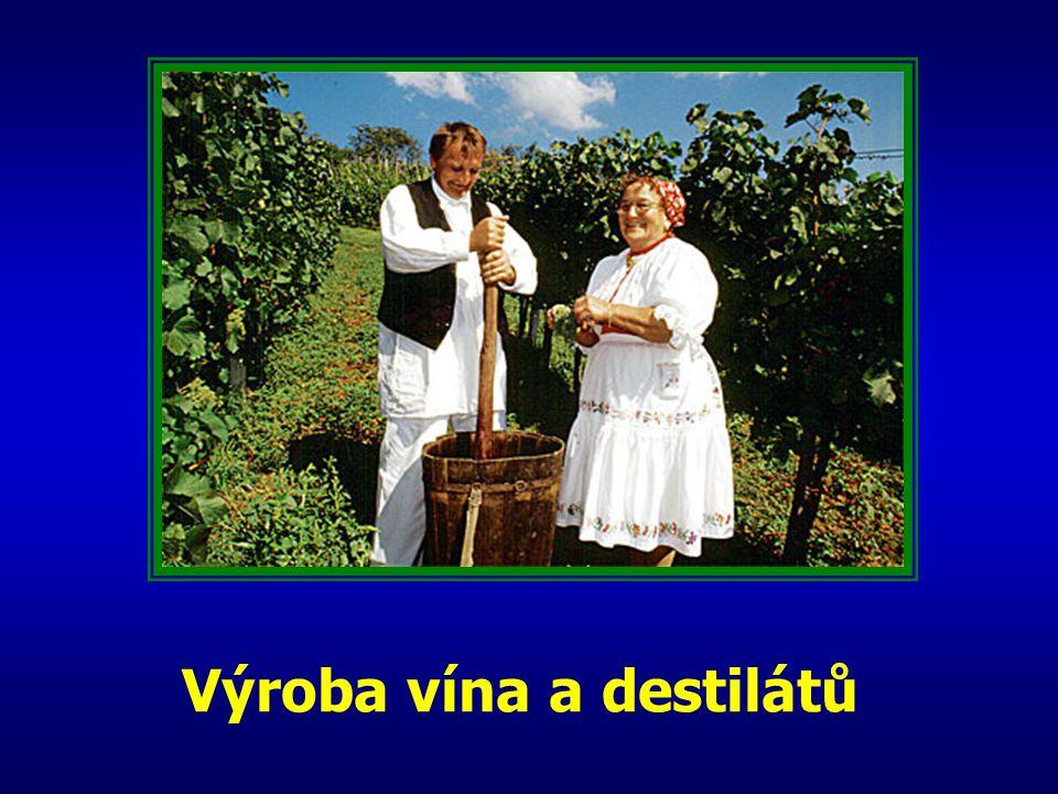 Výroba vína a destilátů