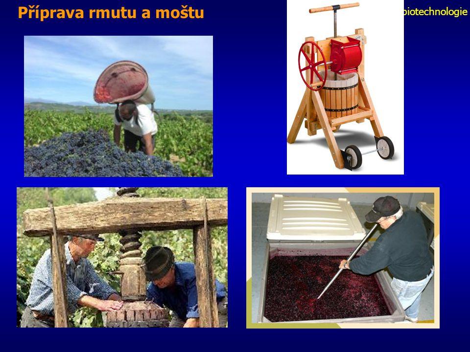 Fermentační biotechnologie Příprava rmutu a moštu