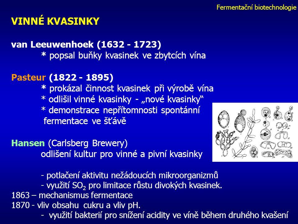"""Fermentační biotechnologie VINNÉ KVASINKY van Leeuwenhoek (1632 - 1723) * popsal buňky kvasinek ve zbytcích vína Pasteur (1822 - 1895) * prokázal činnost kvasinek při výrobě vína * odlišil vinné kvasinky - """"nové kvasinky * demonstrace nepřítomnosti spontánní fermentace ve šťávě Hansen (Carlsberg Brewery) odlišení kultur pro vinné a pivní kvasinky - potlačení aktivitu nežádoucích mikroorganizmů - využití SO 2 pro limitace růstu divokých kvasinek."""