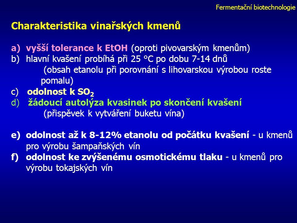 Fermentační biotechnologie Charakteristika vinařských kmenů a)vyšší tolerance k EtOH (oproti pivovarským kmenům) b)hlavní kvašení probíhá při 25 °C po dobu 7-14 dnů (obsah etanolu při porovnání s lihovarskou výrobou roste pomalu) c) odolnost k SO 2 d) žádoucí autolýza kvasinek po skončení kvašení (přispěvek k vytváření buketu vína) e)odolnost až k 8-12% etanolu od počátku kvašení - u kmenů pro výrobu šampaňských vín f)odolnost ke zvýšenému osmotickému tlaku - u kmenů pro výrobu tokajských vín