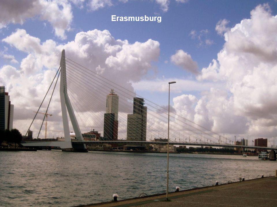 Erasmusburg