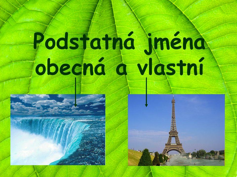 Podstatná jména konkrétní se dělí na: obecnávlastní -označují obecně určitou osobu, zvíře nebo věc (vodopád, město, hrad, pes…) -na začátku slova píšeme malé písmeno -označují určité, konkrétní názvy osob, zvířat, věcí… (Ostrava, Eva, Čechy, Francouz…) -na začátku slova píšeme velké písmeno