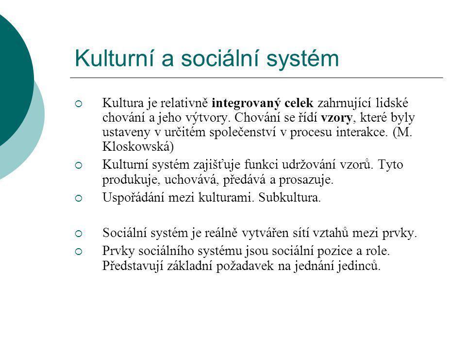 Kulturní a sociální systém  Kultura je relativně integrovaný celek zahrnující lidské chování a jeho výtvory.