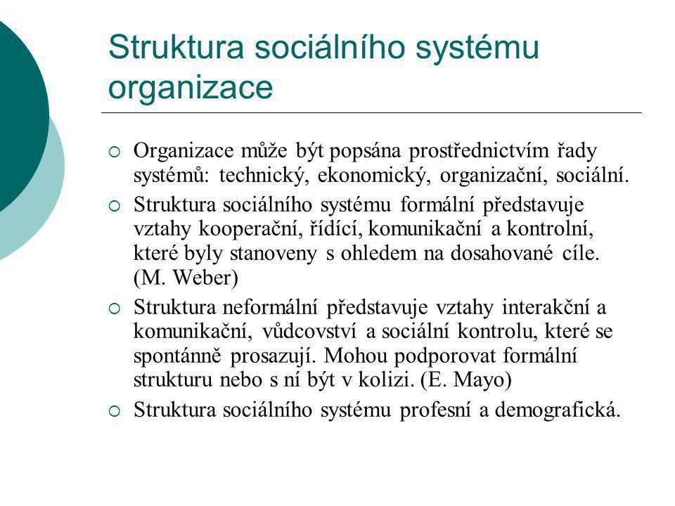 Struktura sociálního systému organizace  Organizace může být popsána prostřednictvím řady systémů: technický, ekonomický, organizační, sociální.