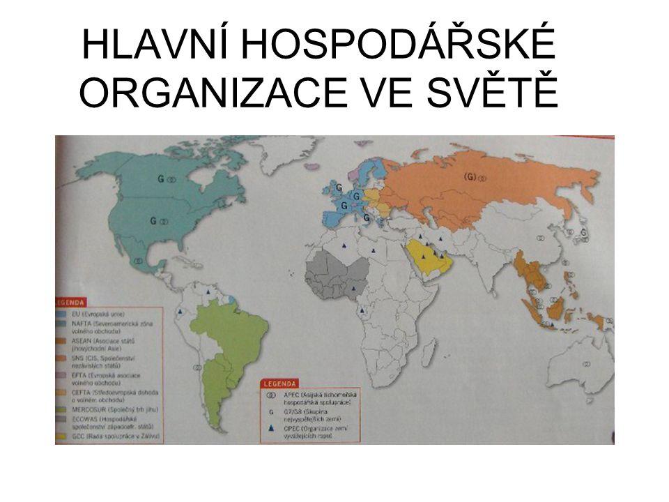 HLAVNÍ HOSPODÁŘSKÉ ORGANIZACE VE SVĚTĚ
