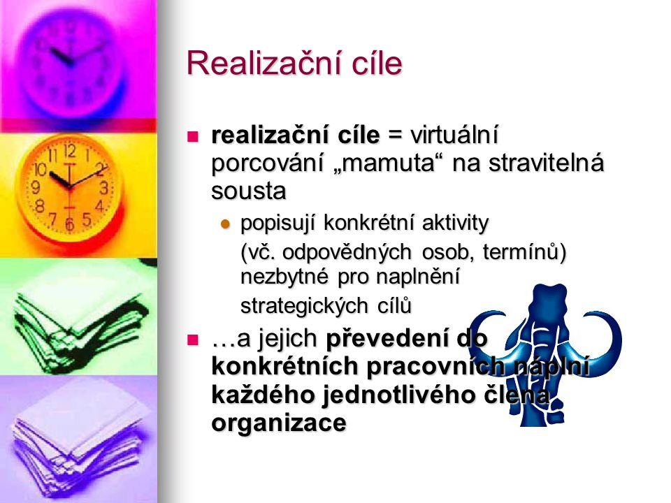 """Realizační cíle realizační cíle = virtuální porcování """"mamuta"""" na stravitelná sousta realizační cíle = virtuální porcování """"mamuta"""" na stravitelná sou"""
