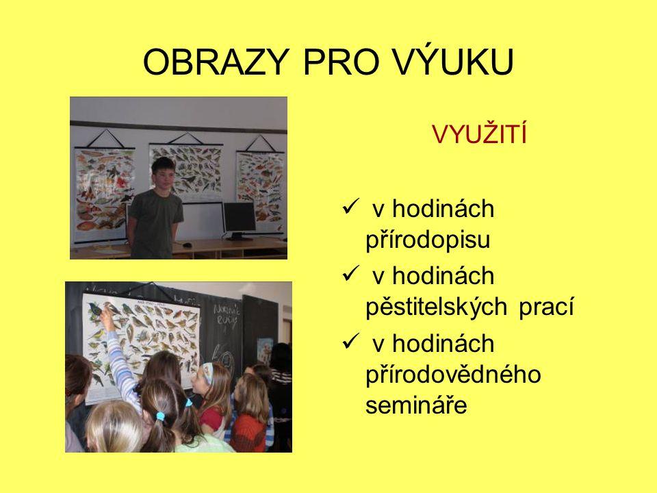 DATAPROJEKTOR VYUŽITÍ  promítání DVD  promítání prezentací žáků  na celoškolní konferenci  prezentace pro rodiče