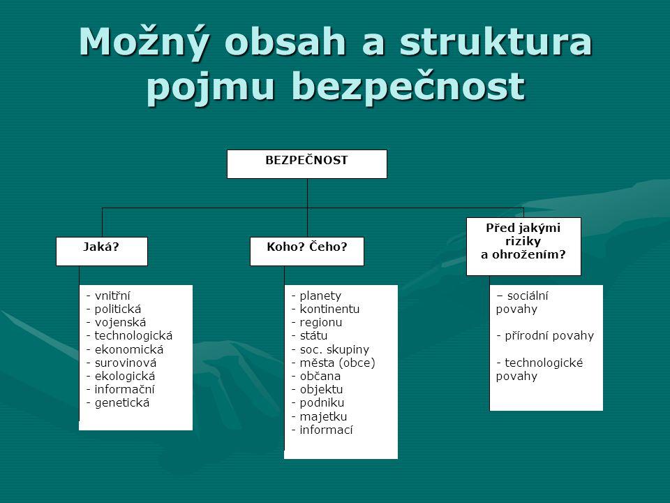 Možný obsah a struktura pojmu bezpečnost BEZPEČNOST Jaká?Koho? Čeho? Před jakými riziky a ohrožením? - vnitřní - politická - vojenská - technologická