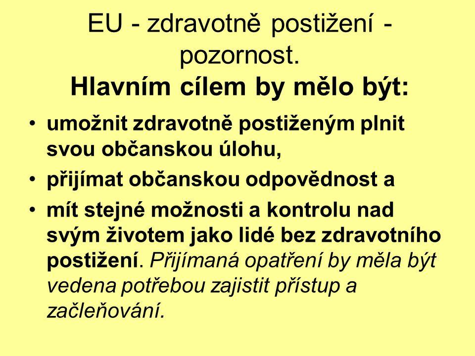EU - zdravotně postižení - pozornost. Hlavním cílem by mělo být: umožnit zdravotně postiženým plnit svou občanskou úlohu, přijímat občanskou odpovědno