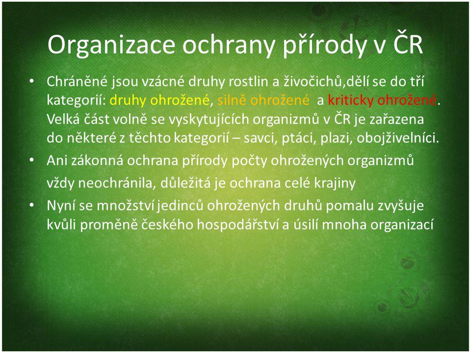 Organizace ochrany přírody v ČR Chráněné jsou vzácné druhy rostlin a živočichů,dělí se do tří kategorií: druhy ohrožené, silně ohrožené a kriticky ohr