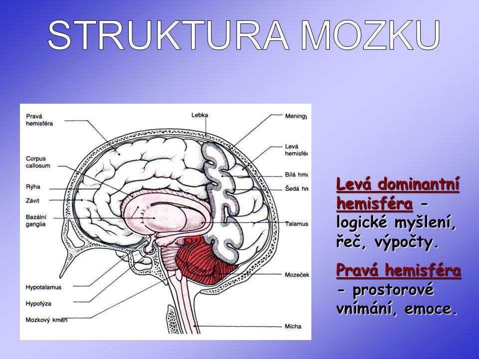 KOMPLIKOVANOST MOZKU KOMPLIKOVANOST MOZKU - 60 typů neuronů, uložených v 6 rozdílných vrstvách - senzorická cent., motorická centra i asociační oblasti - zajišťují chápání i kontrolu emocí.