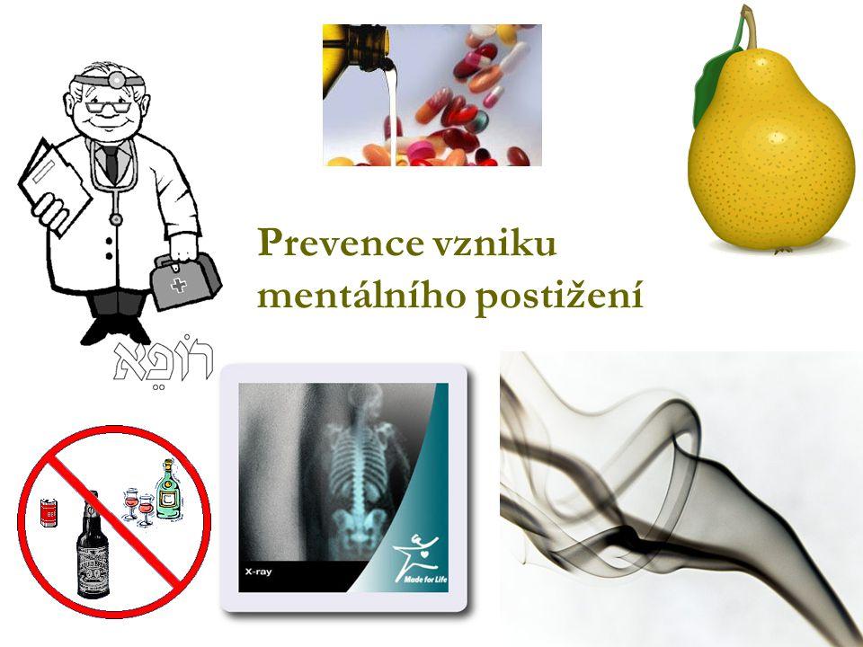 Prevence vzniku mentálního postižení