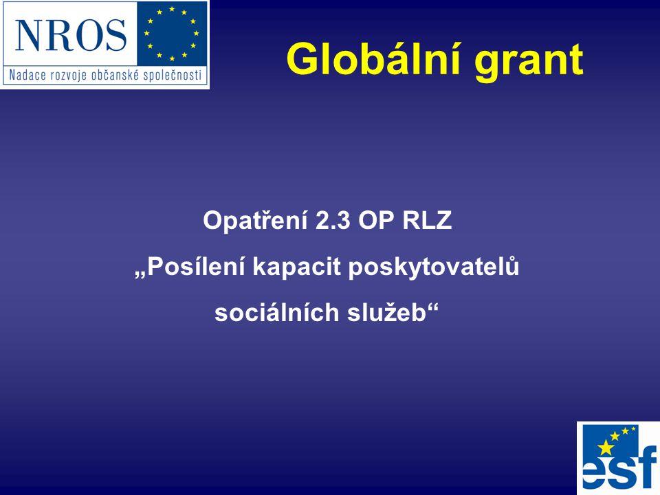 """Opatření 2.3 OP RLZ """"Posílení kapacit poskytovatelů sociálních služeb"""" Globální grant"""
