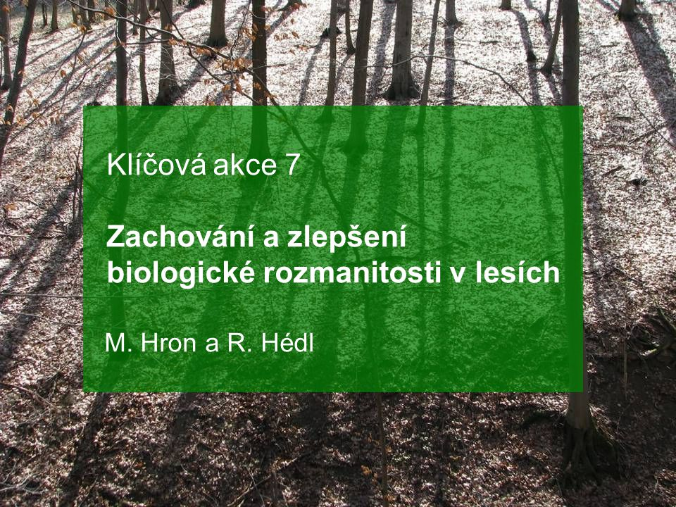 Klíčová akce 7 Zachování a zlepšení biologické rozmanitosti v lesích M. Hron a R. Hédl