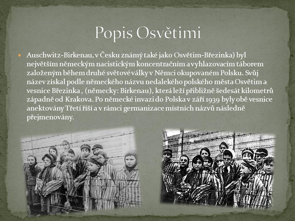 Auschwitz-Birkenau, v Česku známý také jako Osvětim-Březinka) byl největším německým nacistickým koncentračním a vyhlazovacím táborem založeným během