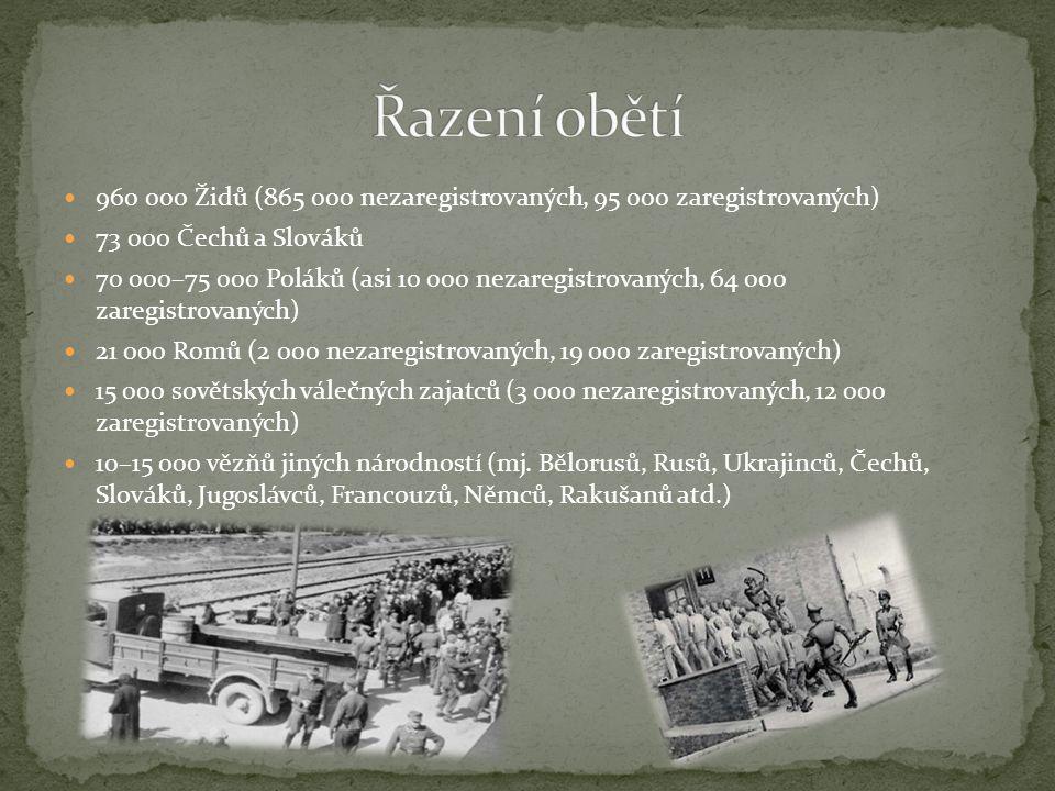 960 000 Židů (865 000 nezaregistrovaných, 95 000 zaregistrovaných) 73 000 Čechů a Slováků 70 000–75 000 Poláků (asi 10 000 nezaregistrovaných, 64 000