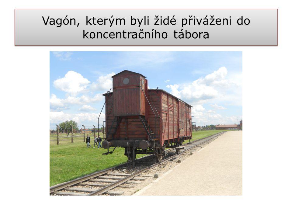 Vagón, kterým byli židé přiváženi do koncentračního tábora