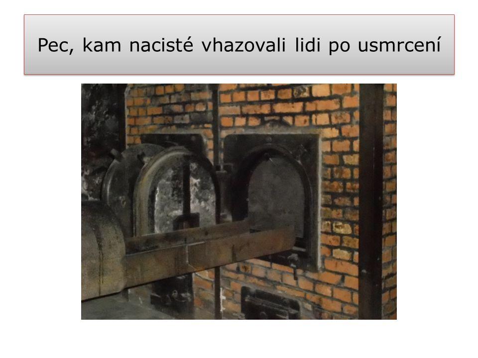 Pec, kam nacisté vhazovali lidi po usmrcení