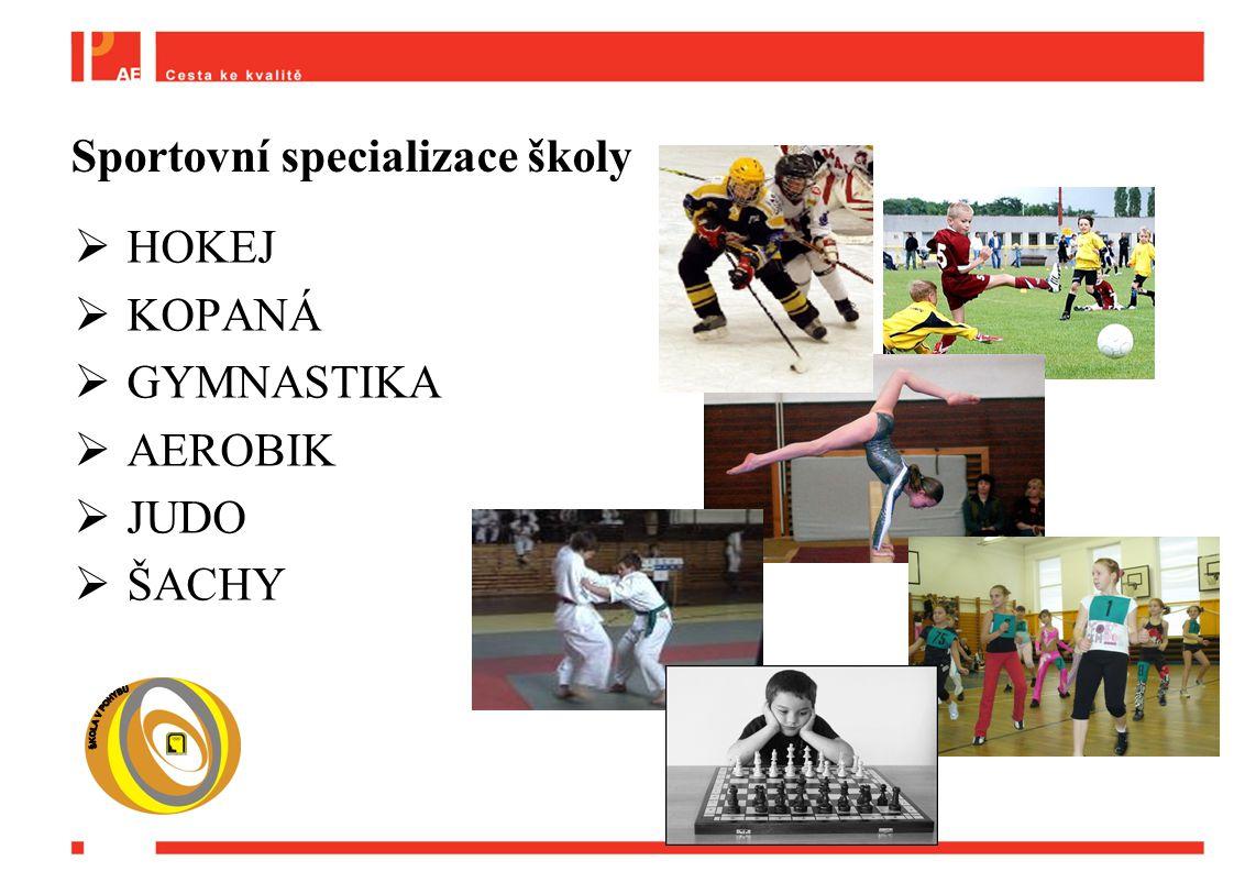  HOKEJ  KOPANÁ  GYMNASTIKA  AEROBIK  JUDO  ŠACHY Sportovní specializace školy