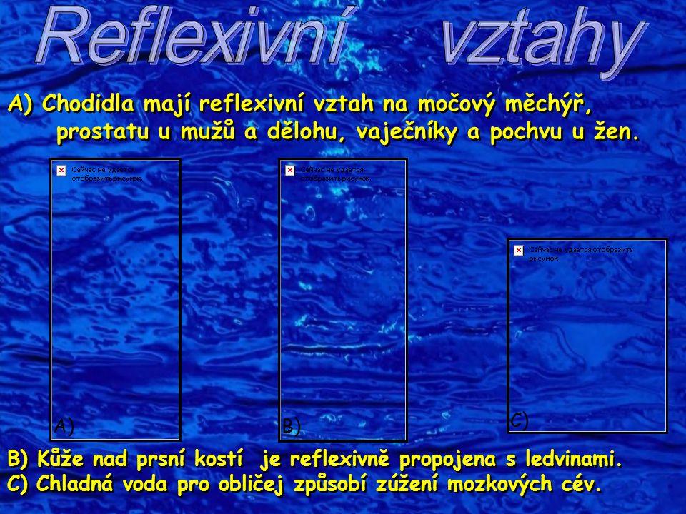 A) Chodidla mají reflexivní vztah na močový měchýř, prostatu u mužů a dělohu, vaječníky a pochvu u žen. B) Kůže nad prsní kostí je reflexivně propojen