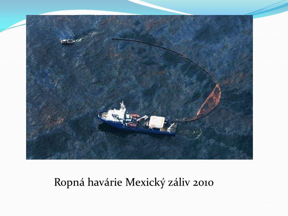 Ropná havárie Mexický záliv 2010
