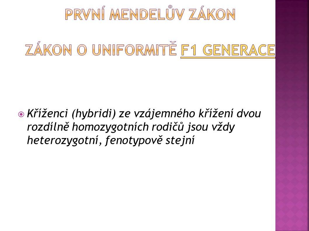 Dědičnost monogenně podmíněných znaků Parentální generace (P) První filiální generace (F1) Druhá filiální generace (F2) Přenos genů z generace na gen