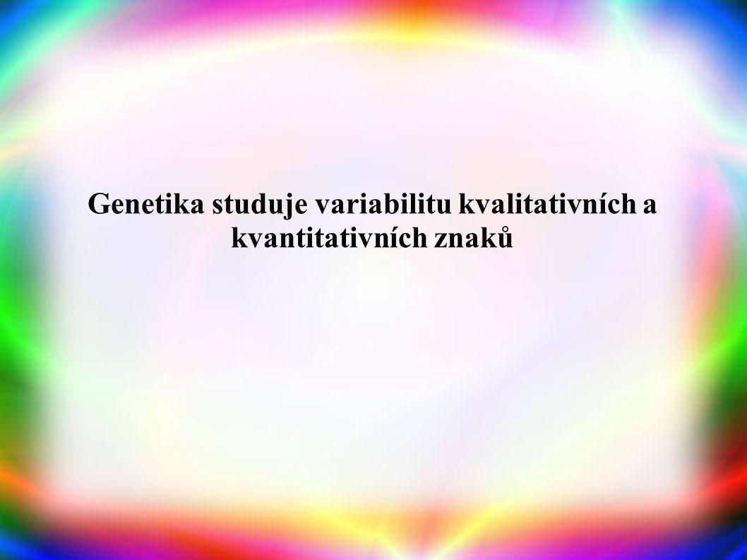 Genetika studuje variabilitu kvalitativních a kvantitativních znaků