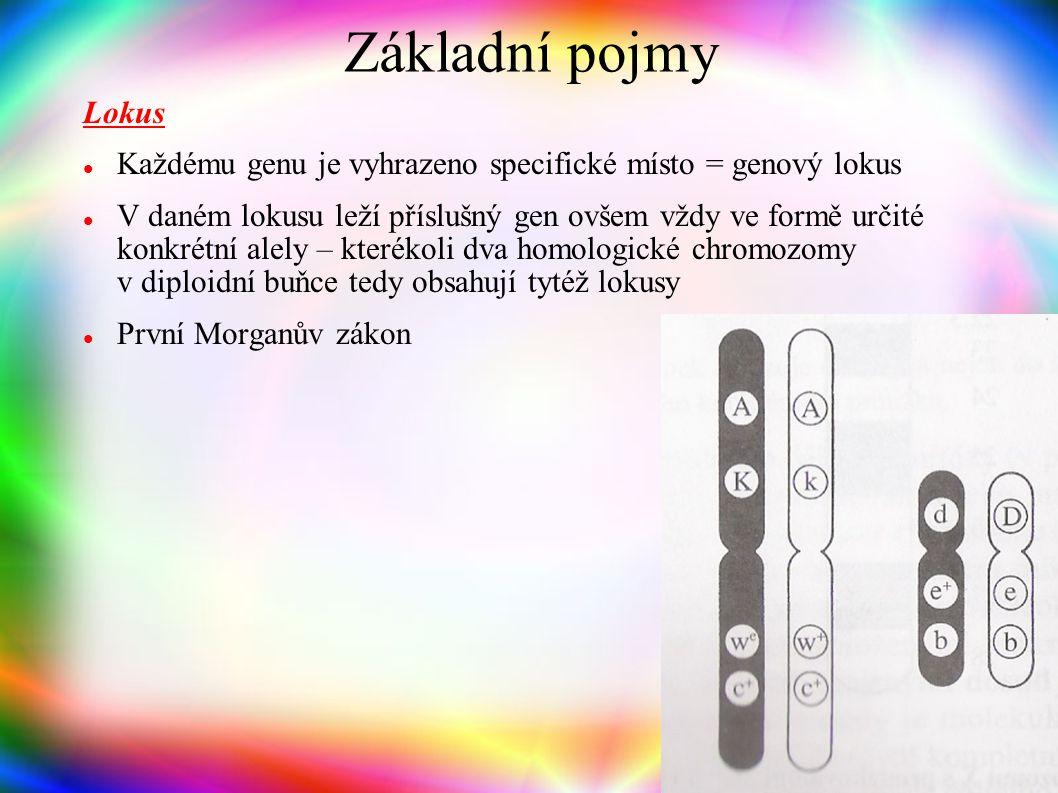 genotyp + prostředí = fenotyp