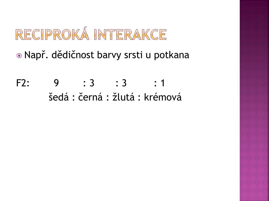  Např. dědičnost barvy srsti u potkana P: aaRR x AArr černá žlutá F1: uniformní AaRr šedá F1: AaRr x AaRr předpokládáme úplnou dominanci F2: