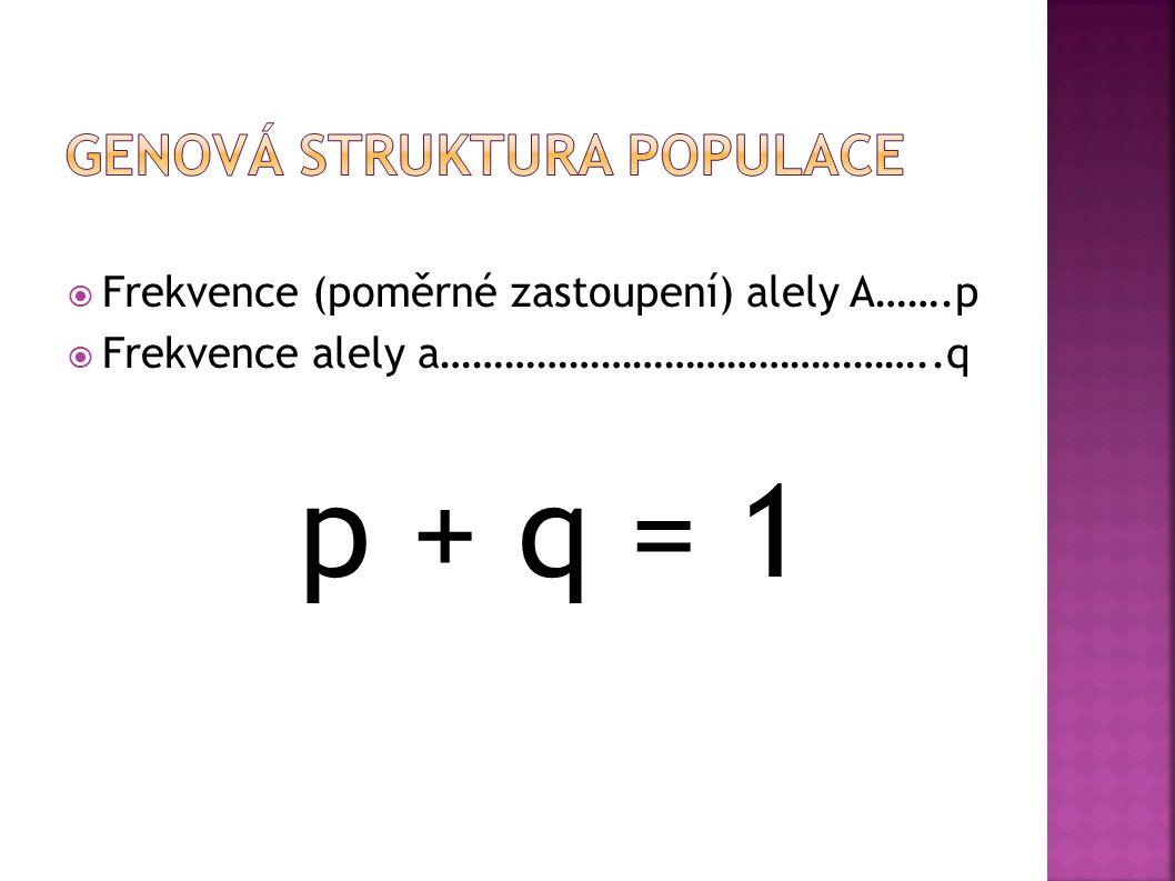  Frekvence (poměrné zastoupení) alely A…….p  Frekvence alely a………………………………………..q p + q = 1
