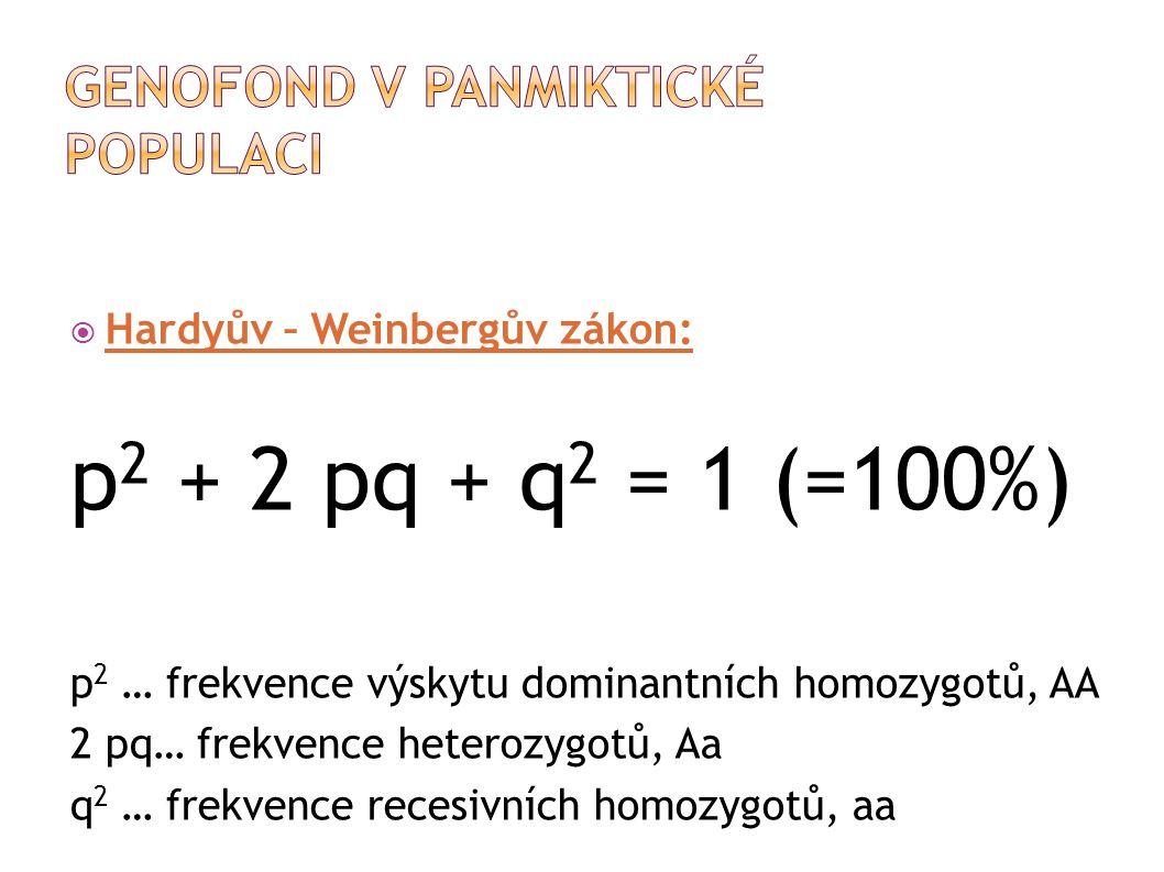  Hardyův – Weinbergův zákon: p 2 + 2 pq + q 2 = 1 (=100%) p 2 … frekvence výskytu dominantních homozygotů, AA 2 pq… frekvence heterozygotů, Aa q 2 … frekvence recesivních homozygotů, aa